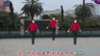 江西南昌玉米可乐广场舞《拜新年》附正背面口令分解教学演示