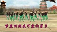 成璞广场舞《再唱洪湖水-3》附正背面口令分解教学演示