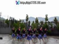 紫蝶踏歌广场舞 落花的窗台 表演