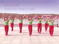 陕西华州小丫胖美人广场舞 张灯结彩 背面展示