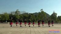 邵阳新宁县高桥柔叶七儿姐妹舞蹈队  阿哥阿妹不分离 表演 团队版 附正背表演口令分解动作分解教学