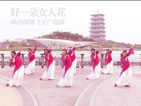 陕西凤舞飞天广场舞 好一朵女人花 表演