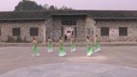 岳阳杨林惜缘舞蹈队广场舞 孔雀公主 表演 团队版