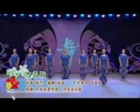 陜西西藝丹鳳舞蹈培訓中心廣場舞 大風歌 表演 團隊版