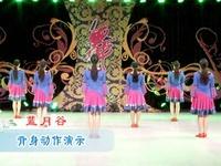 张春丽广场舞 蓝月谷 背面展示