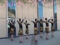 紫蝶踏歌广场舞 花开半朵 正背表演