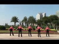 海之韵广场舞 孔雀公主 正背表演