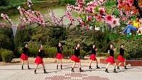 水云月健身舞队《相思桃花雨》正背面演示及口令分解动作教学