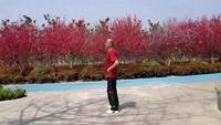 195豫東飛鶴廣場舞《幸福就是你和我》16步口令分解動作教學