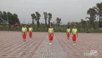吉林怀家乡小晶舞蹈队舞蹈  闯码头 表演 团队版 完整版演示及口令分解动作教学