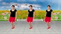 菲菲8舞蹈《闯码头》改编附正背表演口令分解动作分解教学