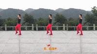 武阿哥廣場舞《語花蝶》原創唯美16步正反面演示及分解動作教學
