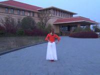 安徽燕舞飞媚广场舞 好一朵女人花 表演 个人版