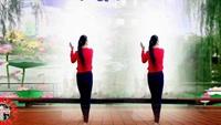 建群村廣場舞32步入門舞《雪蓮花》編舞 劉榮正背面演示及口令分解動作教學