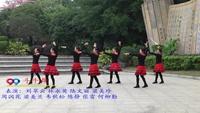 柳州市鱼峰区佳木斯舞动年华 斗牛舞 表演 团队版 原创附教学口令分解动作演示