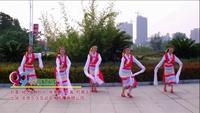 梅梅翠翠舞蹈队广场舞  祝福西藏 表演 团队版 附正背表演口令分解动作分解教学