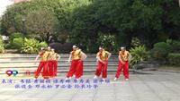 柳州市柳南区峨山开心舞蹈队 自由自在 表演 团队版 口令分解动作教学