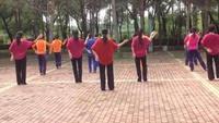 舞美健身隊排舞《向上攀爬》正背面演示及口令分解動作教學和背面演