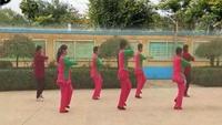 太阳花舞之悦舞蹈《闯码头》口令分解动作教学演示