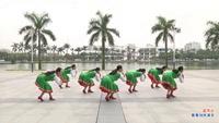 張春麗廣州廣場舞 藍月谷 背面展示 附正背表演口令分解動作分解教學