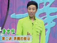 杨艺广场舞 唐古拉 讲课  第二讲 奔腾的骏马
