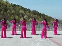 陕西延安飞鸿广场舞 好一朵女人花 背面展示