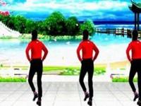金社舞蹈32步步子舞《闯码头dj》原创附正背面口令分解动作教学演示