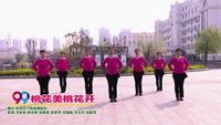 鄭州市夕陽美廣場舞 桃花美桃花開 表演 正背面口令分解動作教學演示