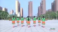 蒙城绿茶飞舞广场舞 吉祥六鼎山 背面展示