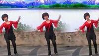 董家湾广场舞《善 良  姑 娘 》附正背表演口令分解动作分解教学