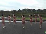 梦青林广场舞 花好月圆 背面展示 口令分解动作教学