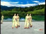 杨艺舞蹈 浏阳河 队形演示 经典正背面演示及口令分解动作教学