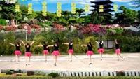 桃花森林廣場舞《愛情輸不起》16步初級入門舞蹈正反面演示及分解動作教學