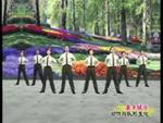 杨艺舞蹈 军旗下的我们 队形演示 原创附教学口令分解动作演示