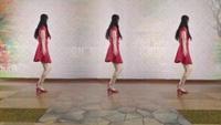 葉久久廣場舞《小蘋果》原創初級入門舞蹈附教學口令分解動作教學