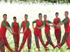 沭河之光广场舞《荞麦花》原创秧歌风格健身舞口令分解动作教学演示