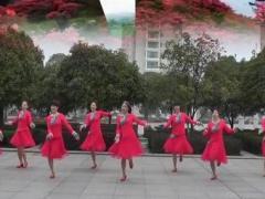 高安子君广场舞《山花朵朵开》31期 附背面与分解原创附教学口令分解动作演示
