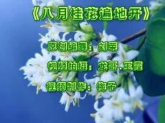 刘荣广场舞《八月桂花遍地开》原创附教学附正背面口令分解教学演示