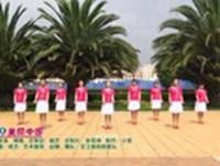 王江南苑明星广场舞 美丽中国 表演 原创附教学口令分解动作演示