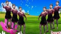 柏麗英子秀《牧羊姑娘》周思萍廣場舞正反面演示及分解動作教學