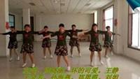 辛莊姐妹廣場舞改編《北風吹又吹》編舞:花姿正背面演示及口令分解動作教學和背面演
