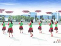 河南新野春華秋韻廣場舞 娜魯灣情歌 背面展示 正反面演示及分解動作教學