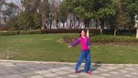 新兒   《半城山半城水》  蘇州盛澤雨夜廣場舞完整版演示及分解教學演示