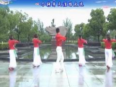 楠楠舞蹈《不怨情深奈何缘浅》(抒情美舞附教学)口令分解动作教学