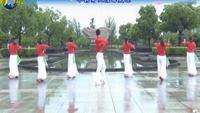 楠楠舞蹈—不怨情深奈何缘浅(抒情美舞附教学)正背面演示及口令分解动作教学