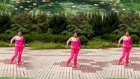 水云月健身舞隊《妹妹比花俏》完整版演示及分解教學演示
