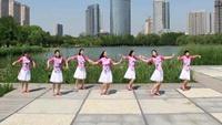 山东莲雨荷舞蹈《落花的窗台》优美舒缓中三舞蹈经典正背面演示及口令分解动作教学