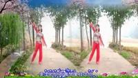 李楠楠舞蹈《我在成都等你》编舞制作:花飞情雪经典正背面演示及口令分解动作教学