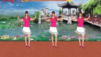 惠州石灣玲玲廣場舞《我愛廣場舞》正背面演示附正背表演口令分解動作分解教學