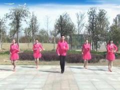 楠楠舞蹈《在希望的田野上》(原创经典入门步子舞)口令分解动作教学演示